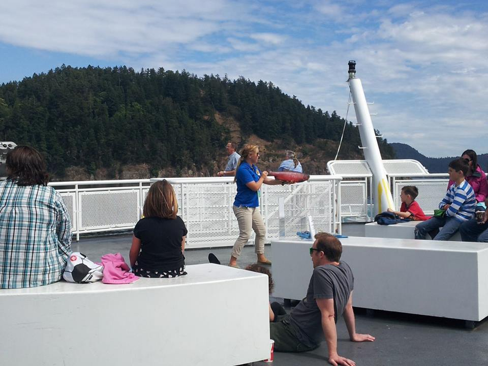 Coastal Naturalist teaches ferry passengers about BC marine and coast life