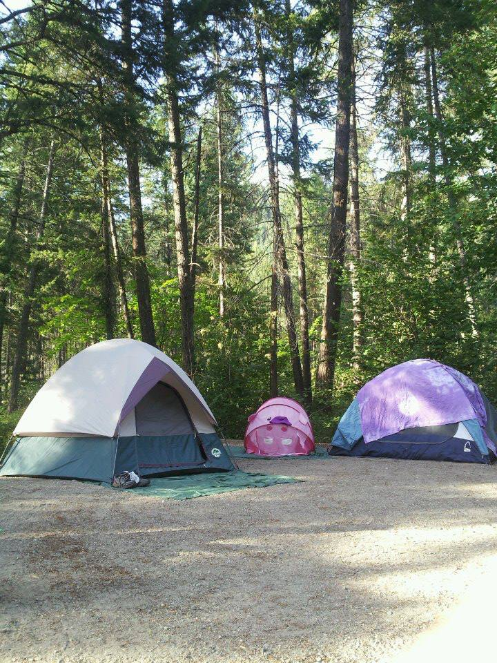 Tents are set up in campground