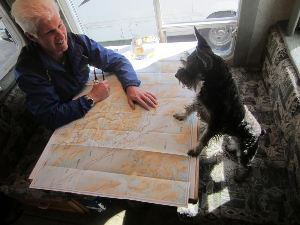 Little dog looking at a map with it's owner