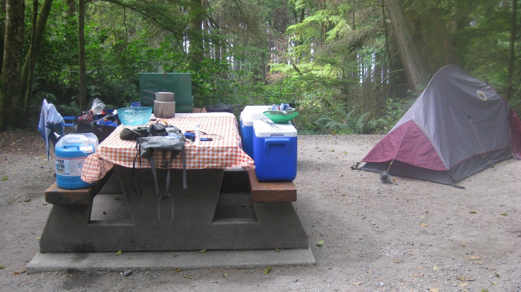 Coolers on a picnic table and a tent in background
