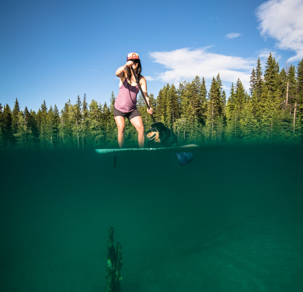 Women and dog paddle boarding on a lake