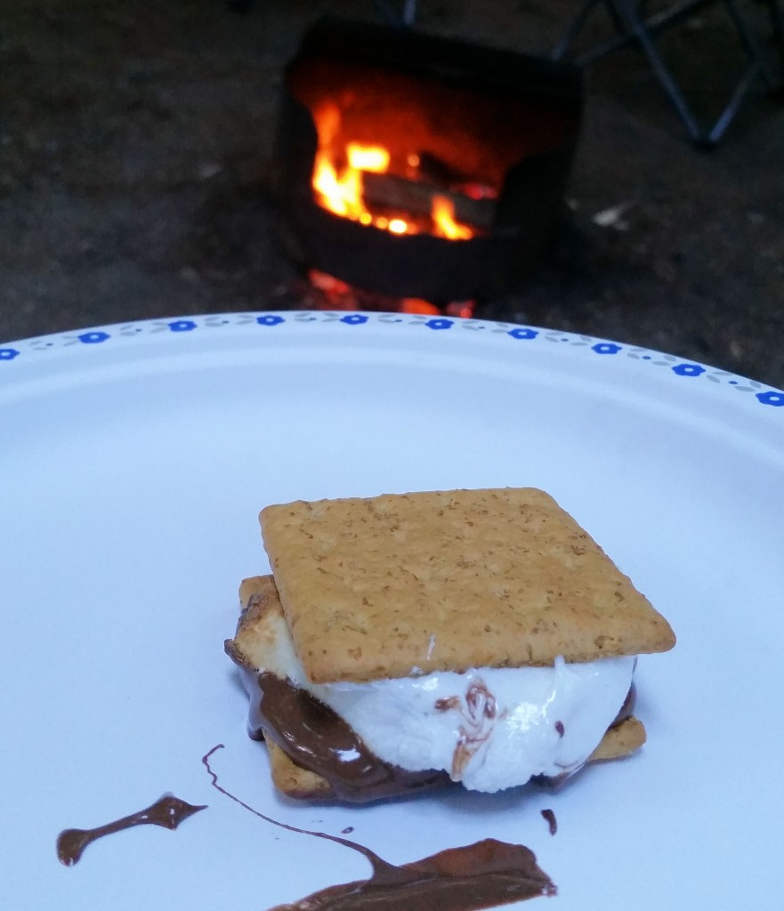 Picture of a camping S'more