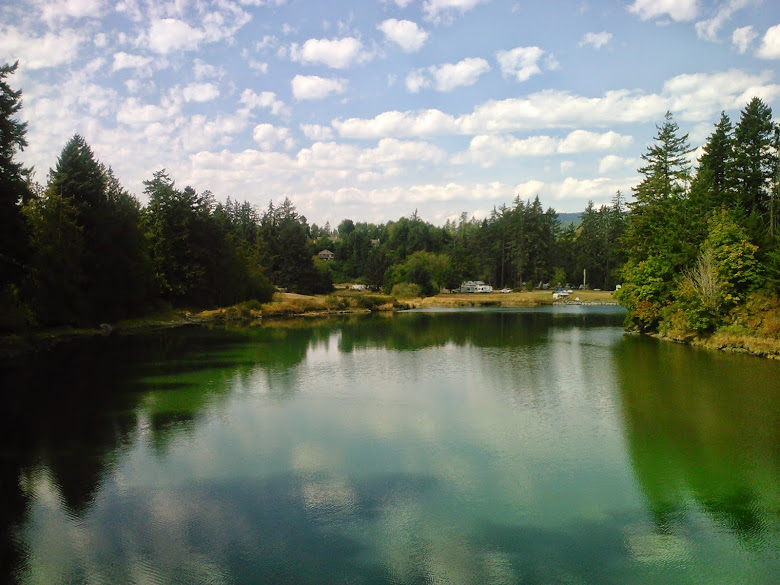 Picture of sooke river campsite