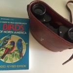 Grandpa's Bird Book and Binoculars.
