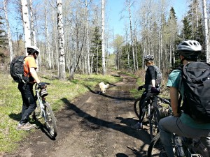 Heading Out on the Lundbom Mountain Bike Trail