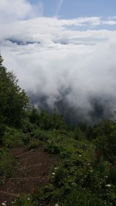 Views from top of Elk Mountain, on a cloudy day we were above the clouds.