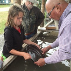 Gold Panning at Fort Steele