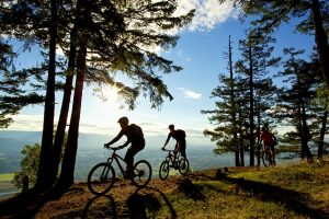 Biking on Mt. Tzouhalem Photo Courtesy Tourism Cowichan