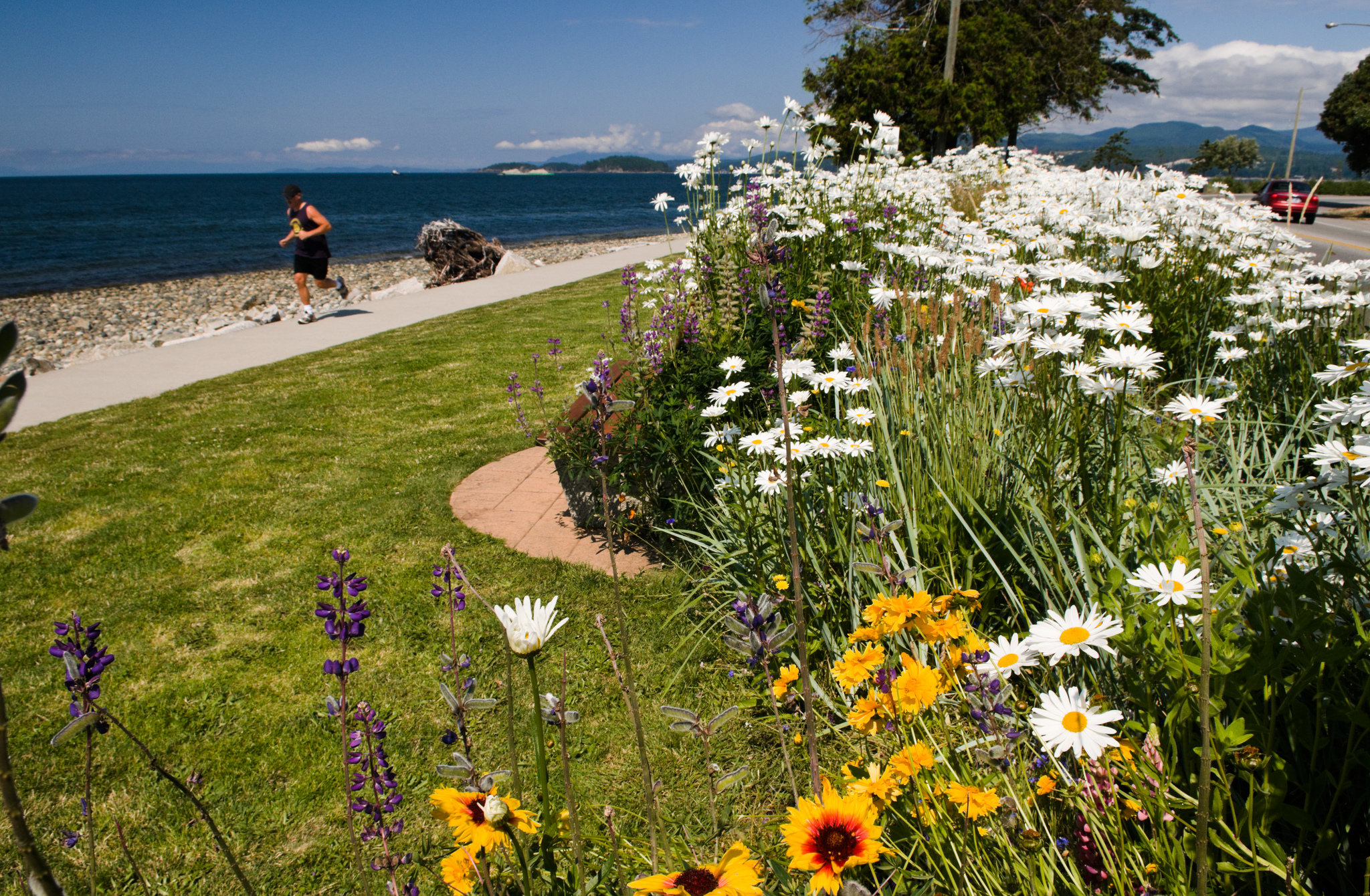 Sechelt Waterfront Photo: Province of BC