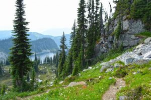 Jade Pass Trail, Mt. Revelstoke