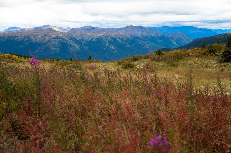 Exploring Northern British Columbia - a Circle Tour Adventure: Tour 2 Stewart-Cassiar Hwy
