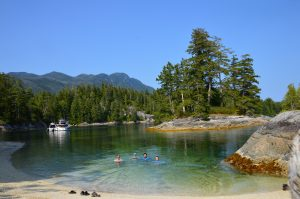 Swimming in the Burdwood Group Islands   Kim Campbell-Walker