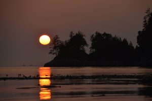 Owl Island Sunset | Kim Campbell-Walker