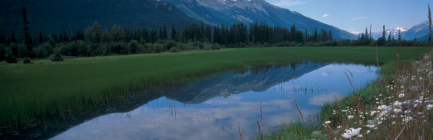 Mount Robson Provincial Park - Robson Meadows Campground