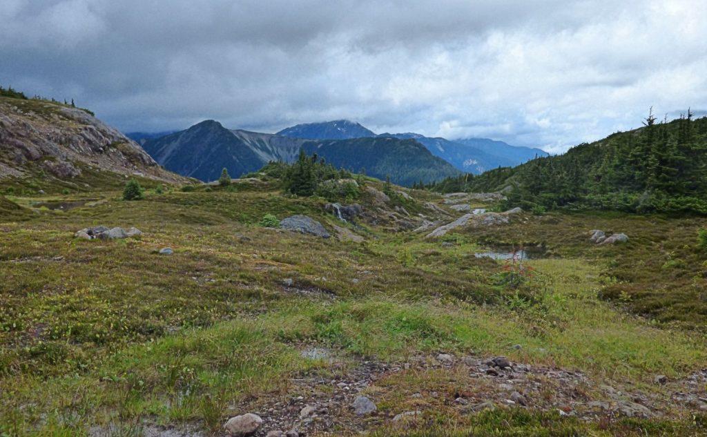 Trapline Mountain Alpine View