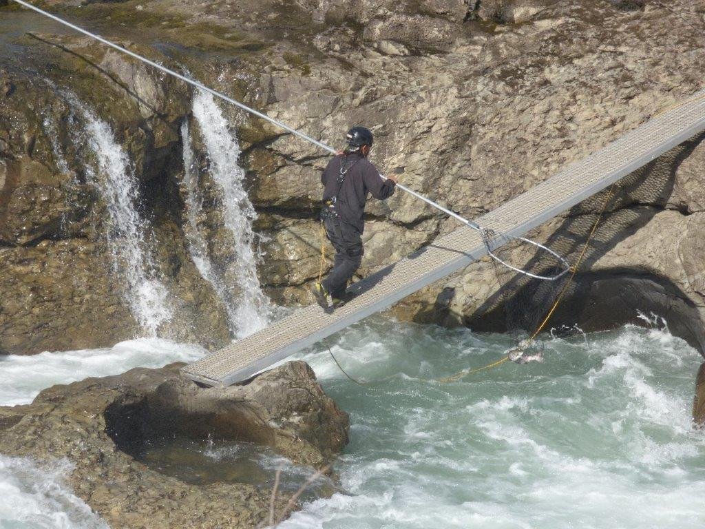 Dipnetting at Witset Falls